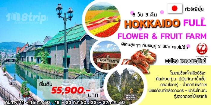 ทัวร์ญี่ปุ่น HOKKAIDO FULL FLOWER & FRUIT FARM 6วัน 3คืน โดยสายการบินเจแปนแอร์ไลน์