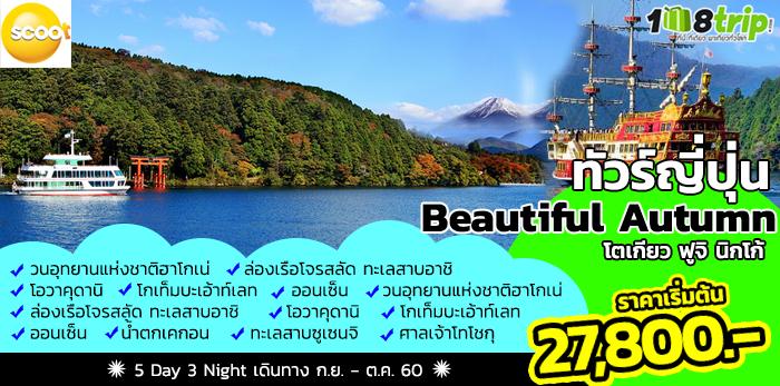 ทัวร์ญี่ปุ่น Beautiful Autumn โตเกียว ฟูจิ นิกโก้ 5 วัน 3 คืน โดยสายการบิน SCOOT AIRLINES (TZ)